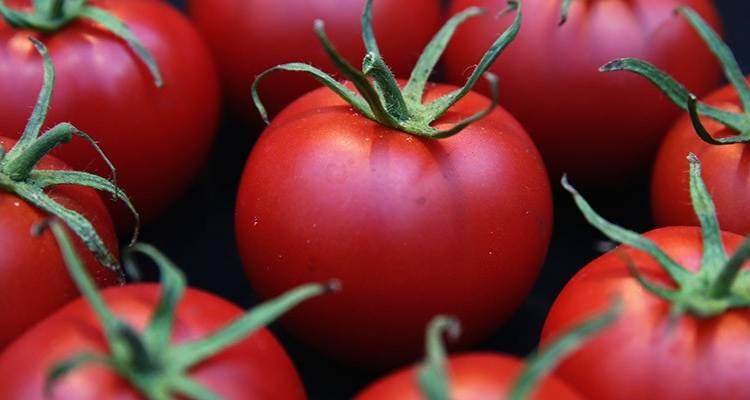 Que nutrientes nos aporta el tomate